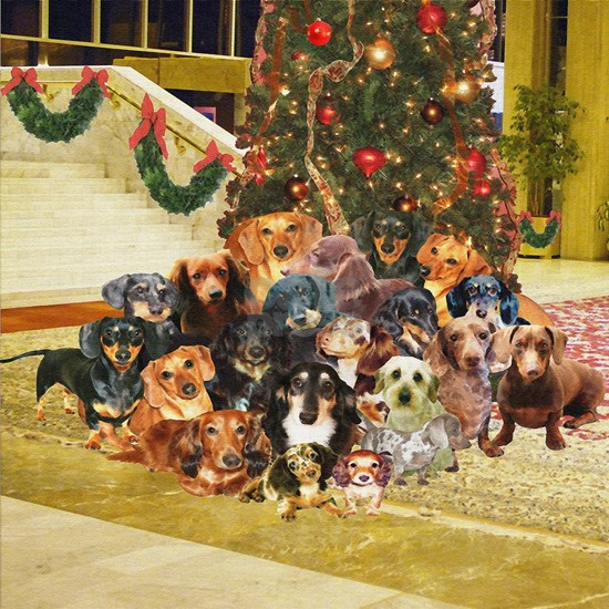 dachshunds family Christmas 200712x12liter