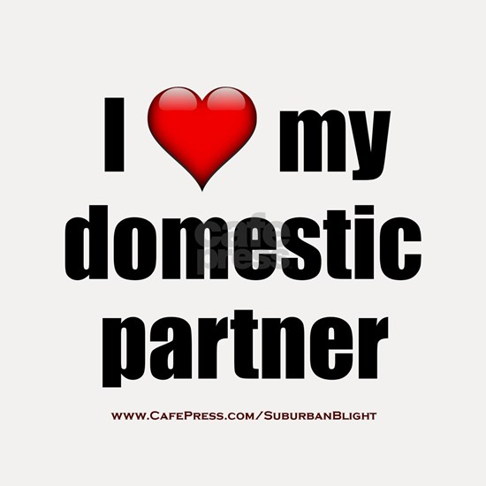 I Love My Domestic Partner lightapparel