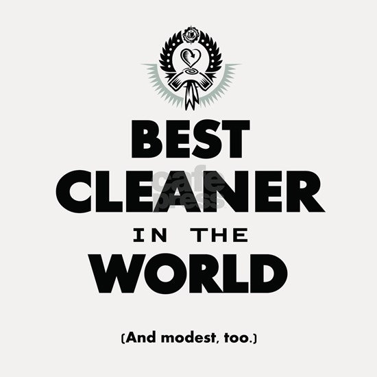 Best Cleaner in the World