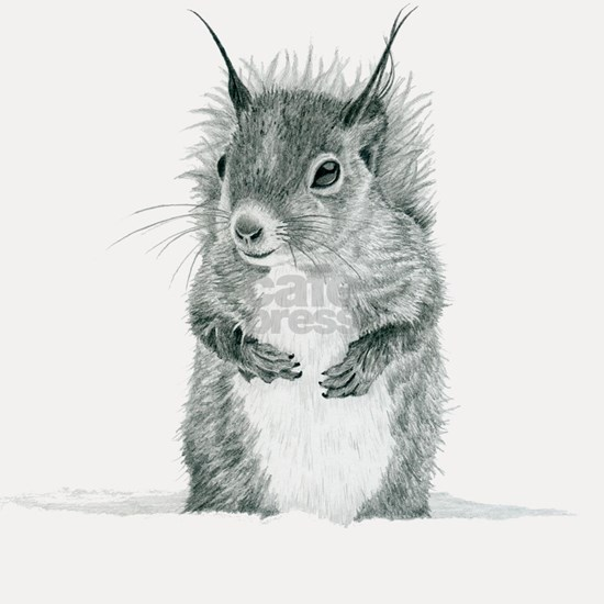 Cute Squirrel Drawing Shot Glass By Forbz Cafepress
