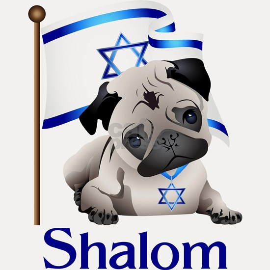 Shalom Pug with Israeli Flag