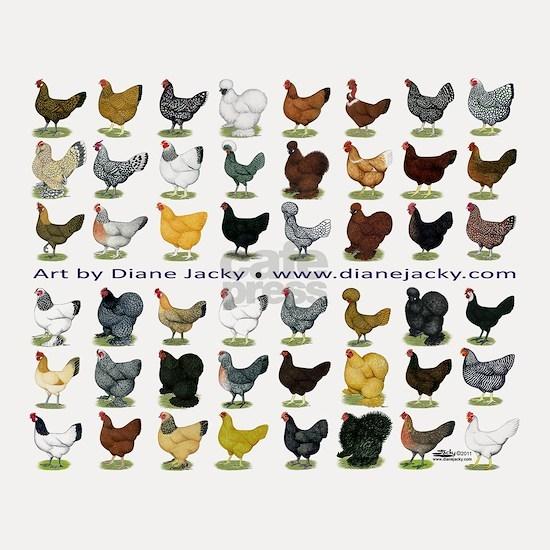 48 Hens Promo