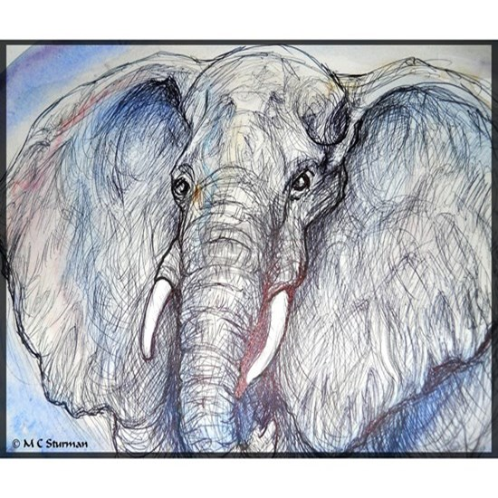 Elephant! Wildlife art!