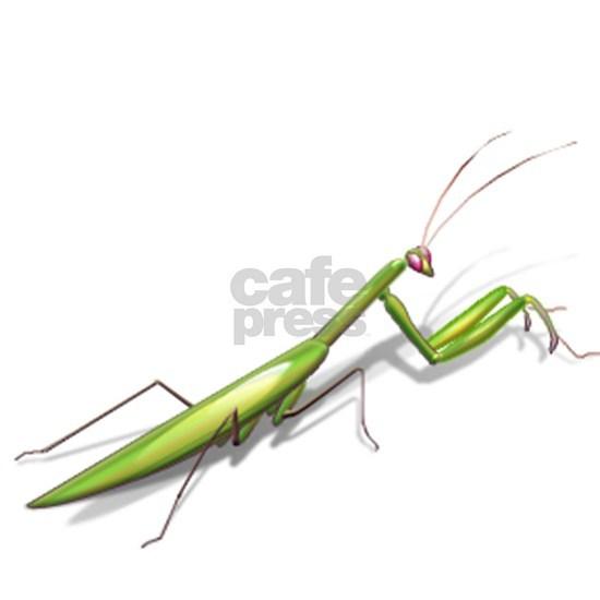 Praying Mantis Left