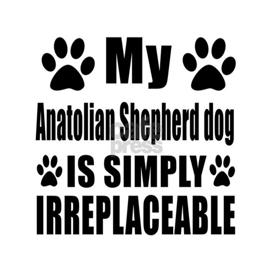 Anatolian Shepherd Is Simply Irreplaceable
