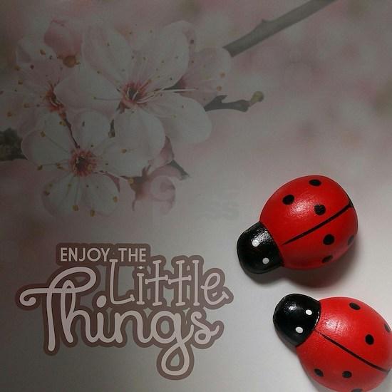 Enjoy the Little Things (Ladybugs)
