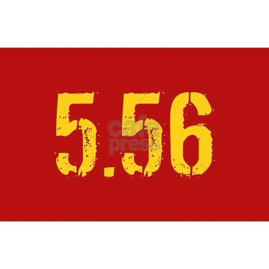 5.56 Ammo: Red & Gold