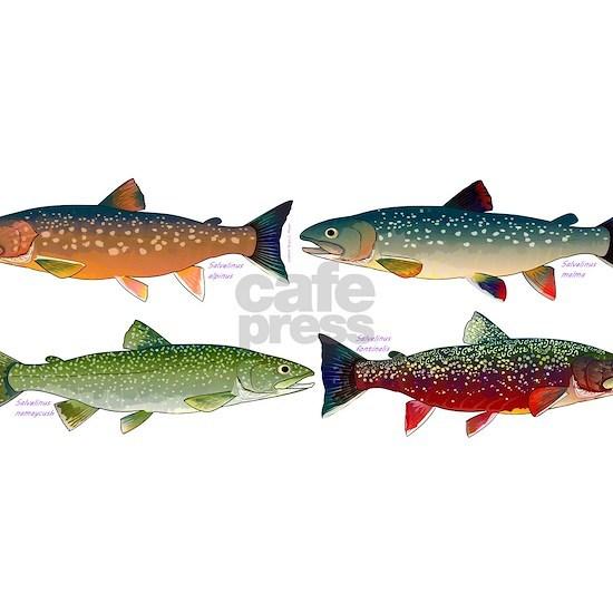4 Char fish