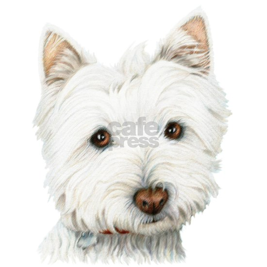 Cute West Highland White Terrier Dog