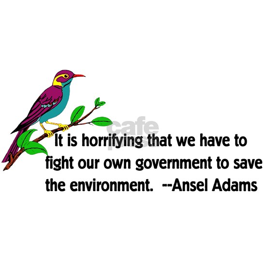 Fighting Government For Environment