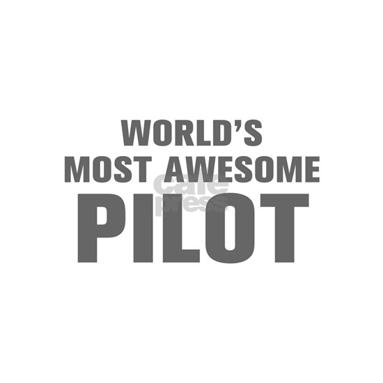 WORLDS MOST AWESOME Pilot-Akz gray 500