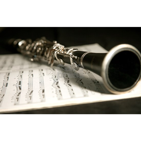 Clarinet and Music Case Laptop Skin