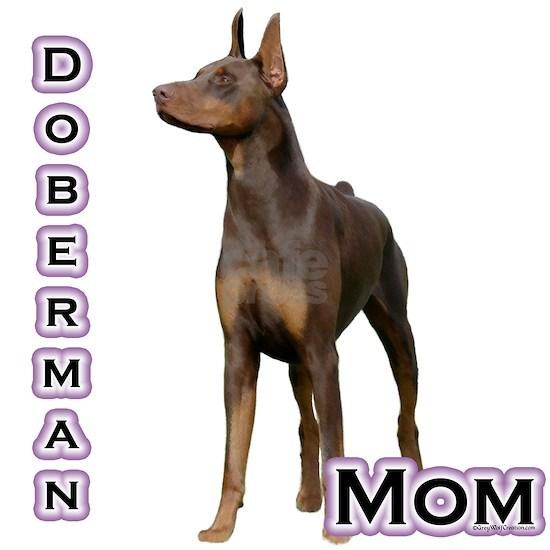 DobermanrustMom4