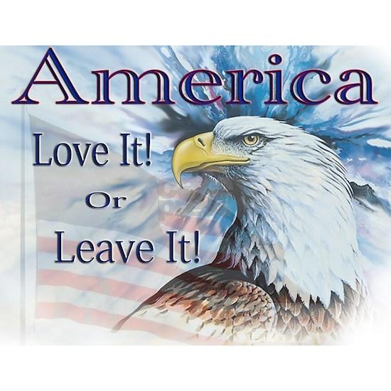 America Love It or Leave It Flattened