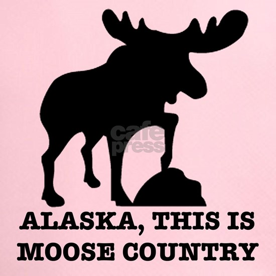 Alaska Moose country