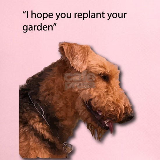 Airedale Terrier wishing you your best in replanti
