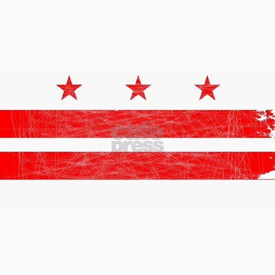Washington DC State Flag