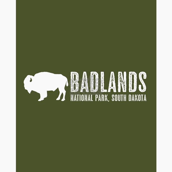 Bison: Badlands, South Dakota