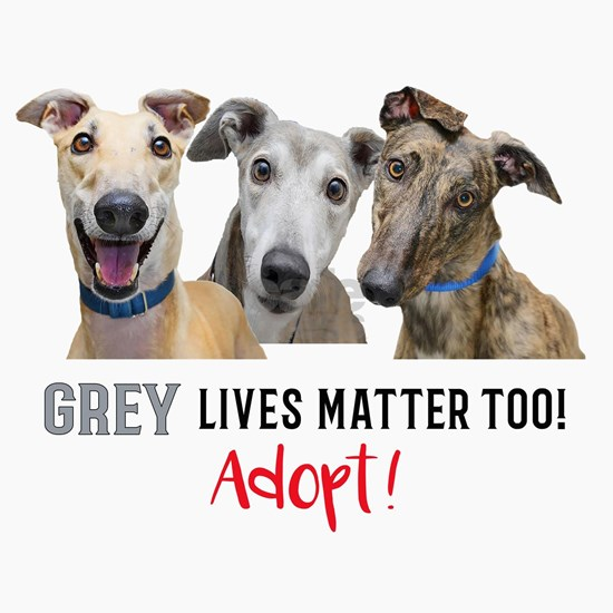 Grey Lives Matter Too ADOPT!
