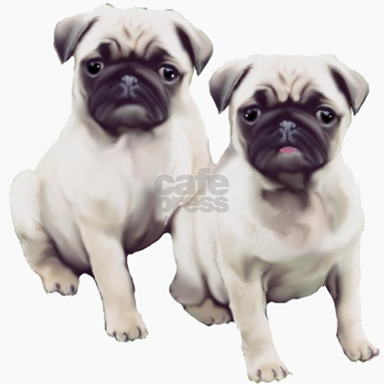 two pugs sitting