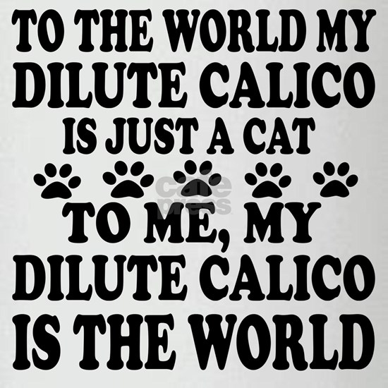 My Dilute Calico Is The World
