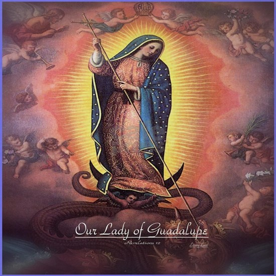 Our Lady of Guadalupe Rev 12