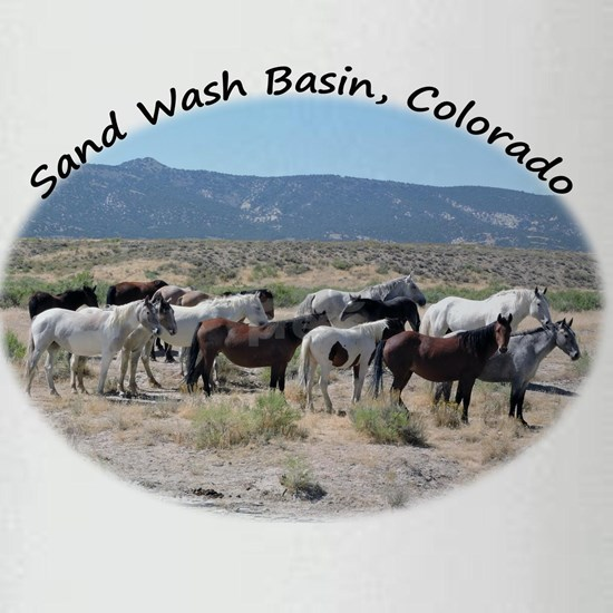 Willie Nelson Sand Wash Basin