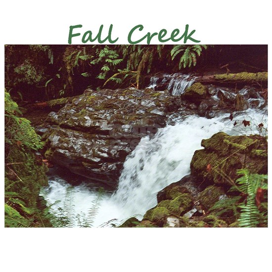 Fall Creek Riparian Hab2wlayer4