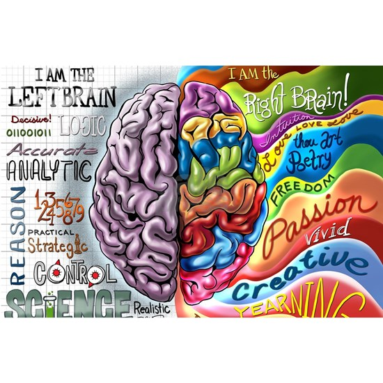 Left Brain Right Brain Cartoon Poster