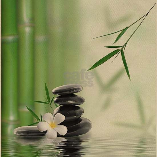 Zen Reflection