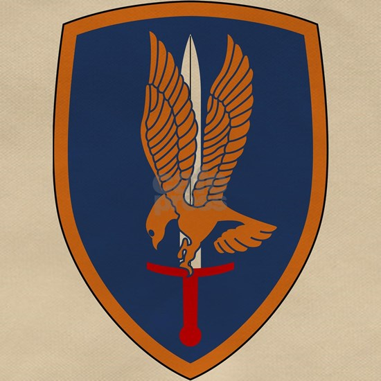 1st Aviation Brigade