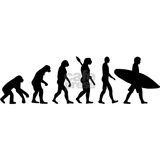 Evolution surfing