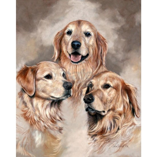 Golden Retrievers by Dawn Secord