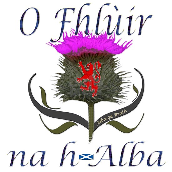 Flower of Scotland Gaelic Thistle Design