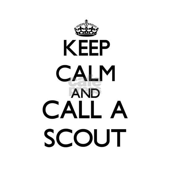Keep calm and call a Scout