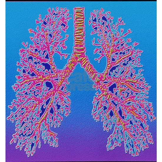 Computer art of human lung trachea
