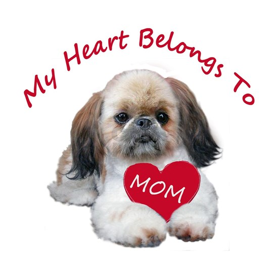 Shih Tzu Belongs To MOM