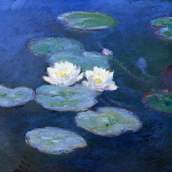 Two Water Lilies Monet