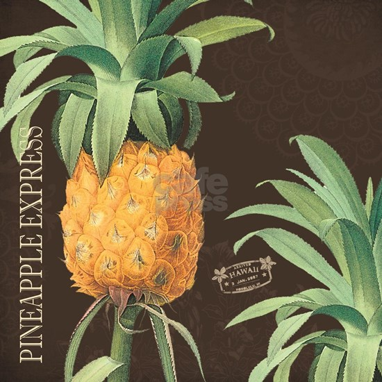 Modern vintage tropical pineapple