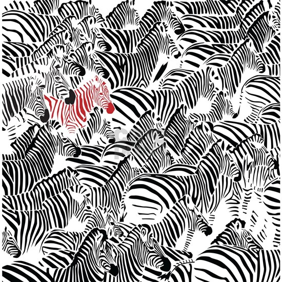 Be Different Zebra Pattern