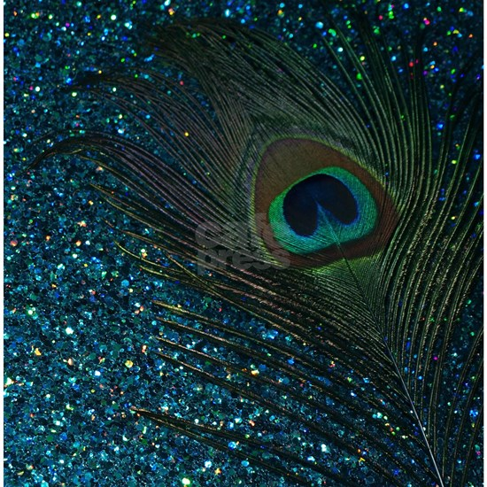 Glittery Aqua Peacock