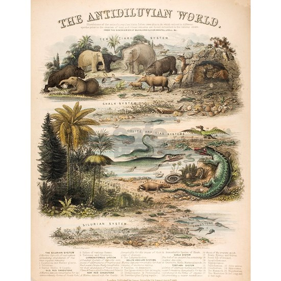 1849 The antidiluvian world by reynolds