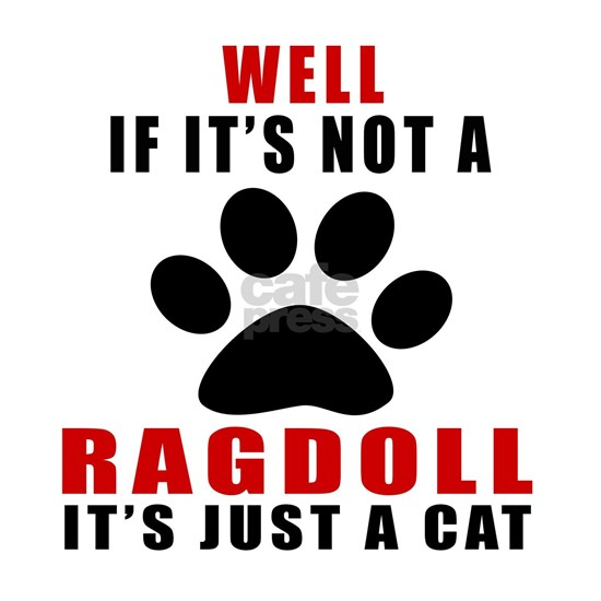If Its Not Ragdoll