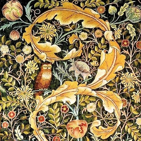 Owl by William Morris
