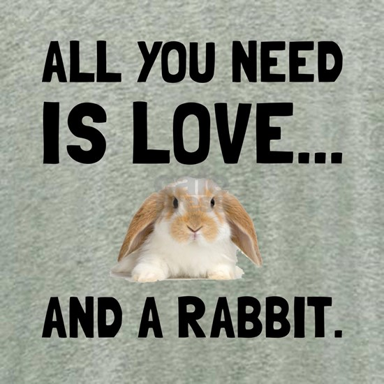 Love And A Rabbit