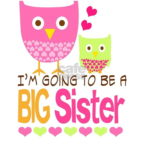 Big Sister Baby Owls I'm Going to be a Big Sister