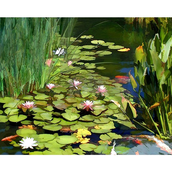 Koi Pond and Water Lilies copy