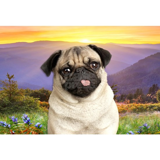Pug Meadow (oval)