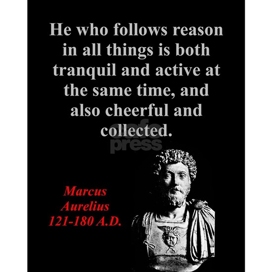 He Who Follows Reason - Marcus Aurelius