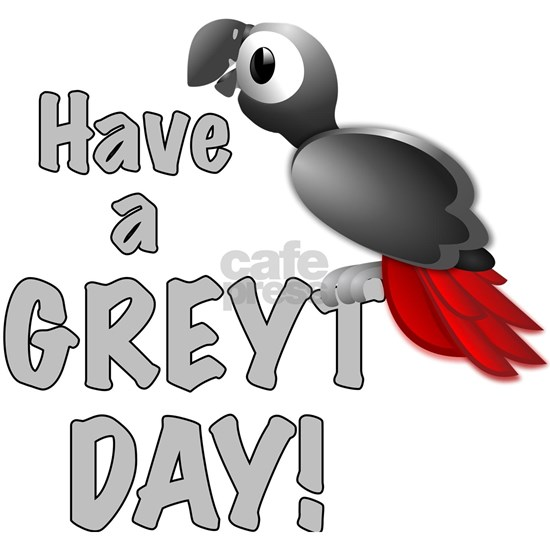 Have a Greyt Day - Great African Grey Parrot